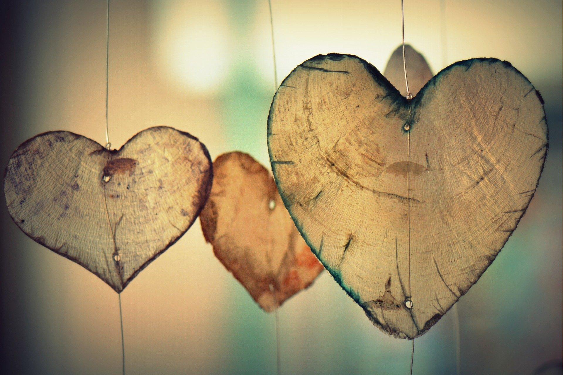 Psicoterapia y Amorosidad
